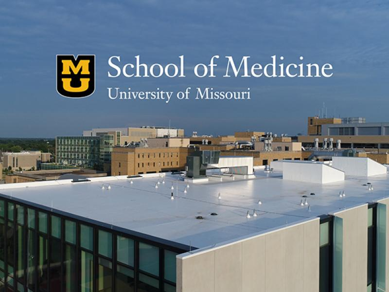School of Medicine, University of Missouri