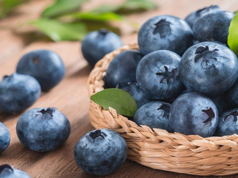 In vitro study combines radiation therapy, blueberry extract to improve treatment.